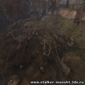 сталкер симбионт скачать торрент - фото 4